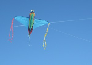 our fish kite