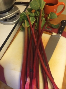 The rhubarb I got is pretty gorgeous - the redder it is, the prettier the results.